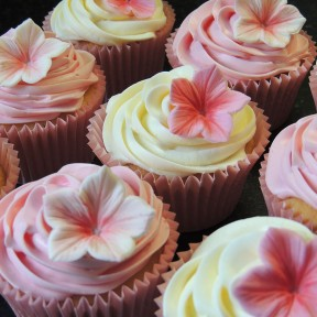 Petunia cupcakes
