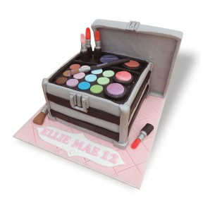 Mac Make-up case